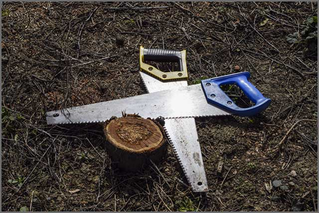 The picture shows a damaged saw blade